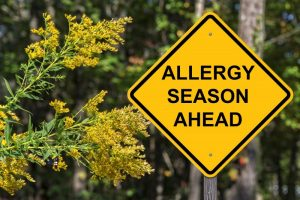 "sign that says ""allergy season ahead"""